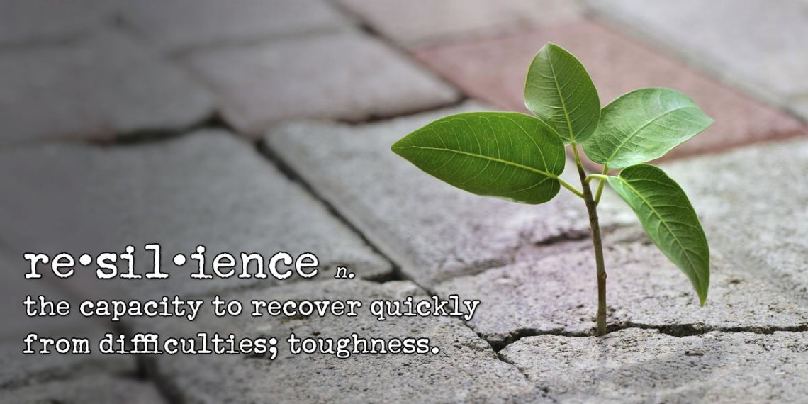 resilience: the capacity to recover quickly from difficulties; toughness.